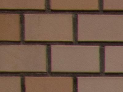 周辺部 f8.0 カメラ補正なし RAWから現像